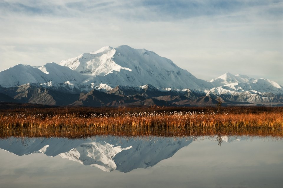 A snowy Denali peak can be seen in the distance. In the midground, a meadow of orange autumnal foliage. All this reflects in a still pool in the foreground