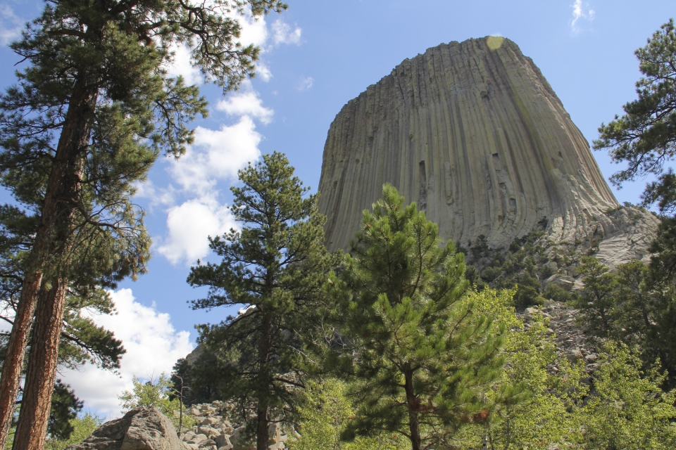 A view of the rock columns of the towering Devils Tower National Monument
