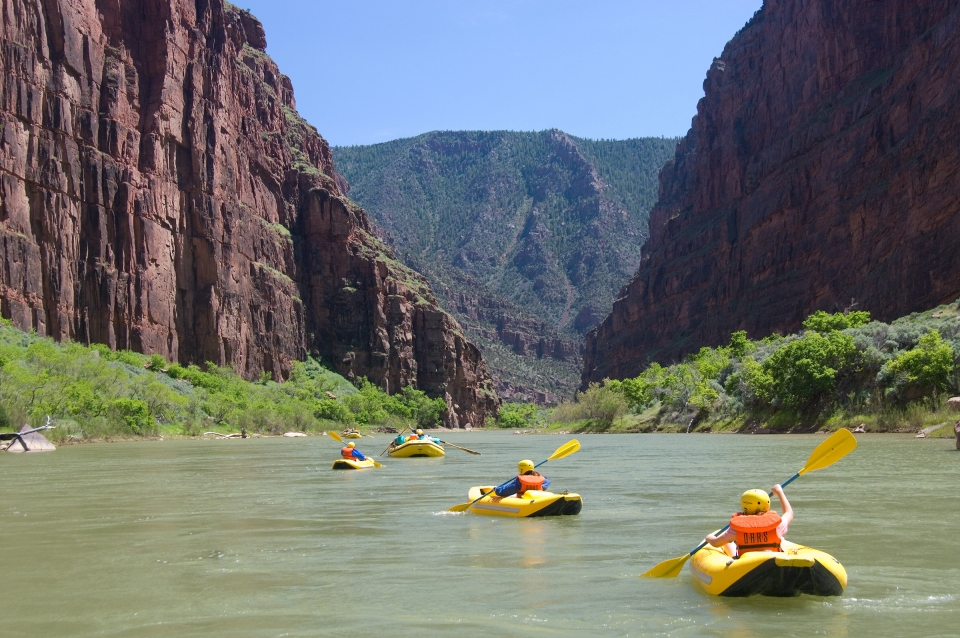 Single rafts paddling on the Green River through Lodore Canyon