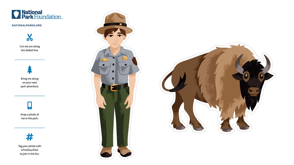 Colored Flat Ranger and Flat Bison