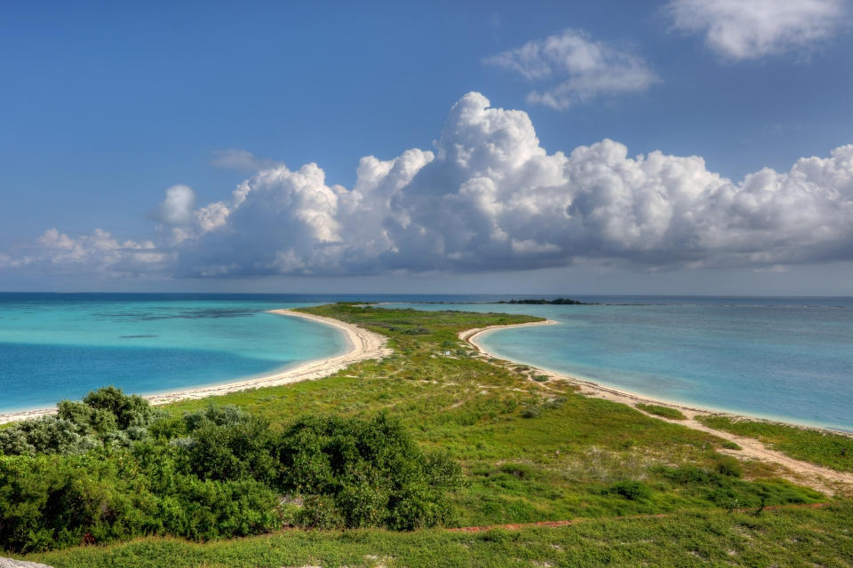 The vibrant green Bush Key in the bright blue sea seen from the fort at Dry Tortugas National Park