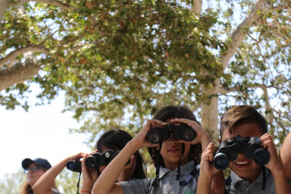 A group of 3 kids looking through binoculars outdoors