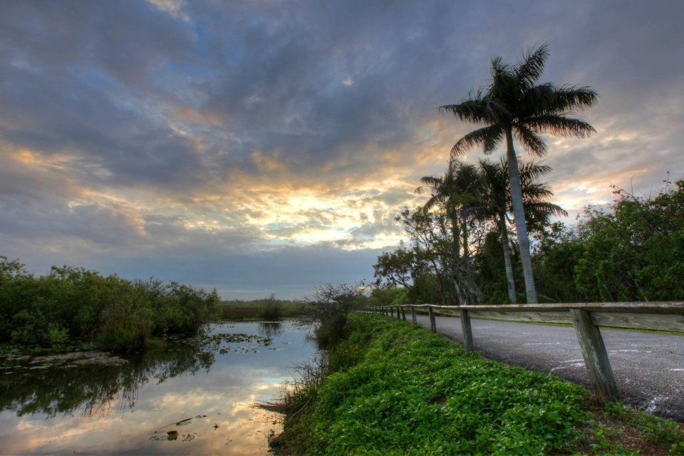 A road next to a water canal in Everglades National Park in the early morning