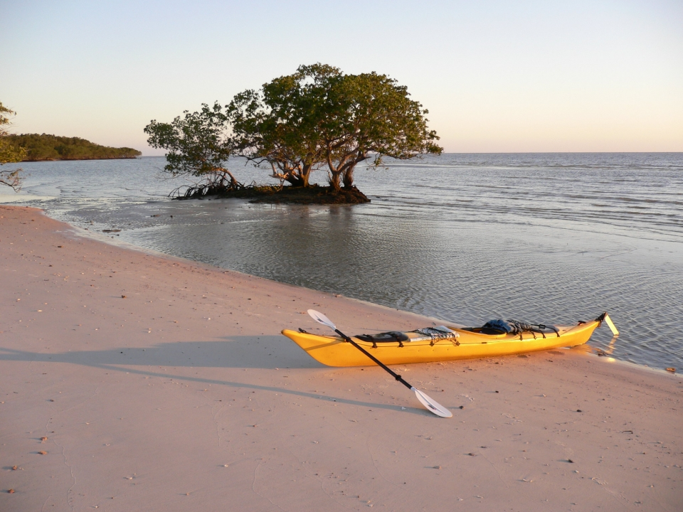 A yellow canoe rests on a sandy shore next to water in Everglades National Park