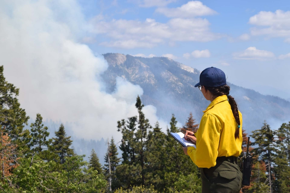 A firefighter takes notes as she watches rising smoke