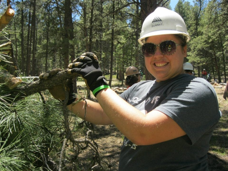 Volunteer in a hard hat wearing gloves and holding a part of a pine tree at Florissant Fossil Beds National Monument