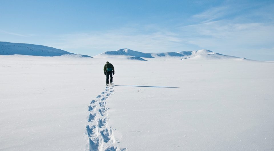 A ranger snowshoes across expansive untracked snow-covered tundra
