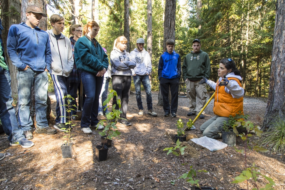 A group of students standing around tree saplings ready for planting at Glacier National Park