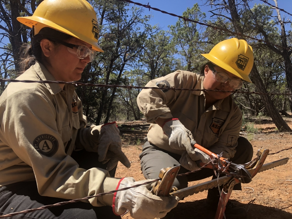 Two service corps members, in yellow hard hats, cut and work with wire fencing