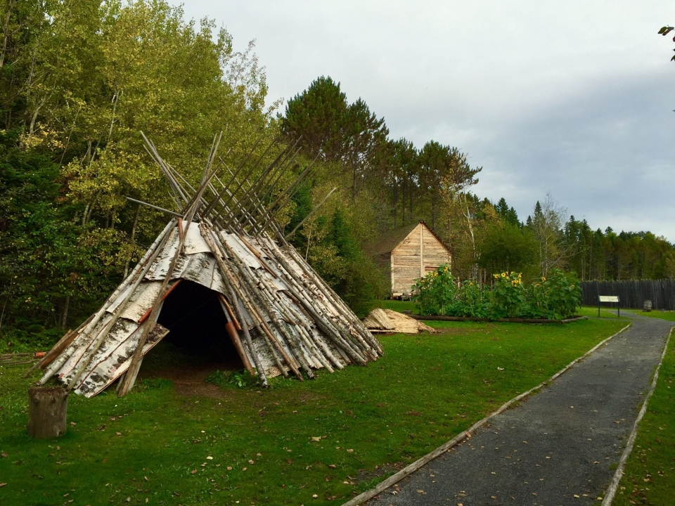 Birchbark wigwams on green grass at Grand Portage National Monument