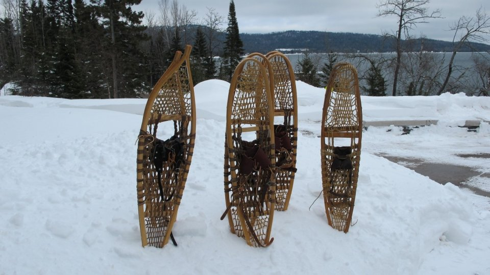 A handful of snowshoes stuck up from a snowbank