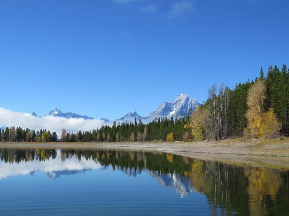 Clear, still waters of Colter Bay at Jackson Lake reflecting green treeline and the rocky mountain range behind at Grand Teton National Park