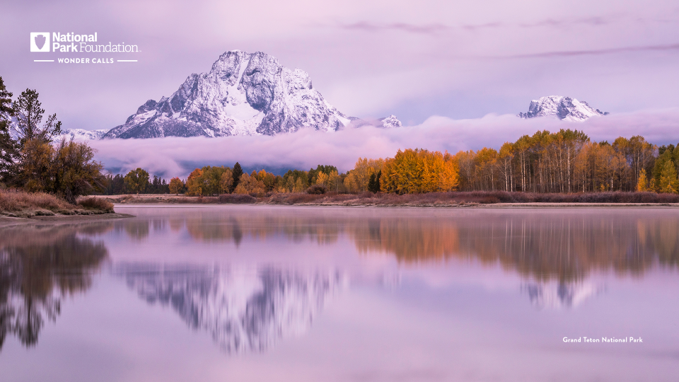 The Grand Teton range reflects in still water below. The sky is a purple-pink and the autumnal leaves are orange and brown