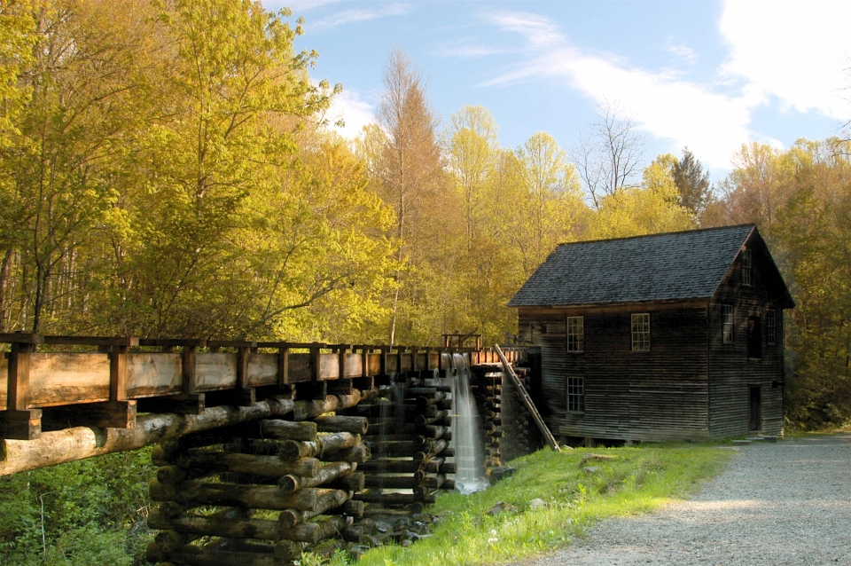 A wooden aqueduct leads to a small wooden mill building, surrounded by trees