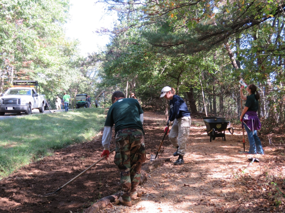 Volunteers for National Public Lands Day at Greenbelt park working on tree trail work