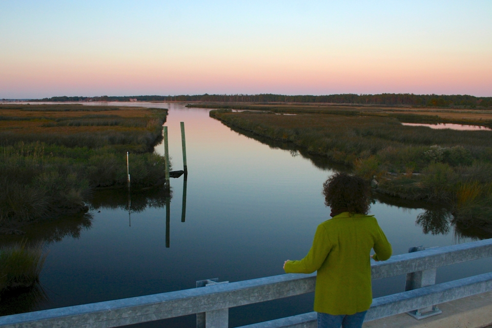 A visitor looks out over Stewart's Canal at dusk