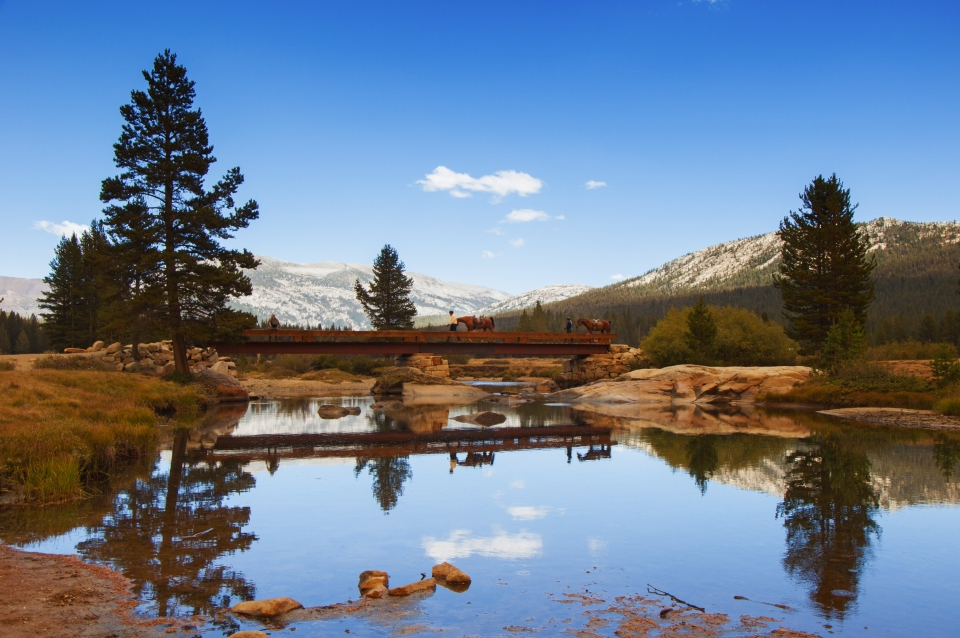 A stream flowing through Tuolumne Meadows reflects riders walking their horses over a wooden bridge with mountains in the distance at Yosemite National Park