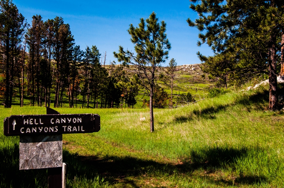 "A sign saying ""Hell Canyon / Canyons Trail"" with green grass and pine trees in the background at Jewel Cave National Monument"