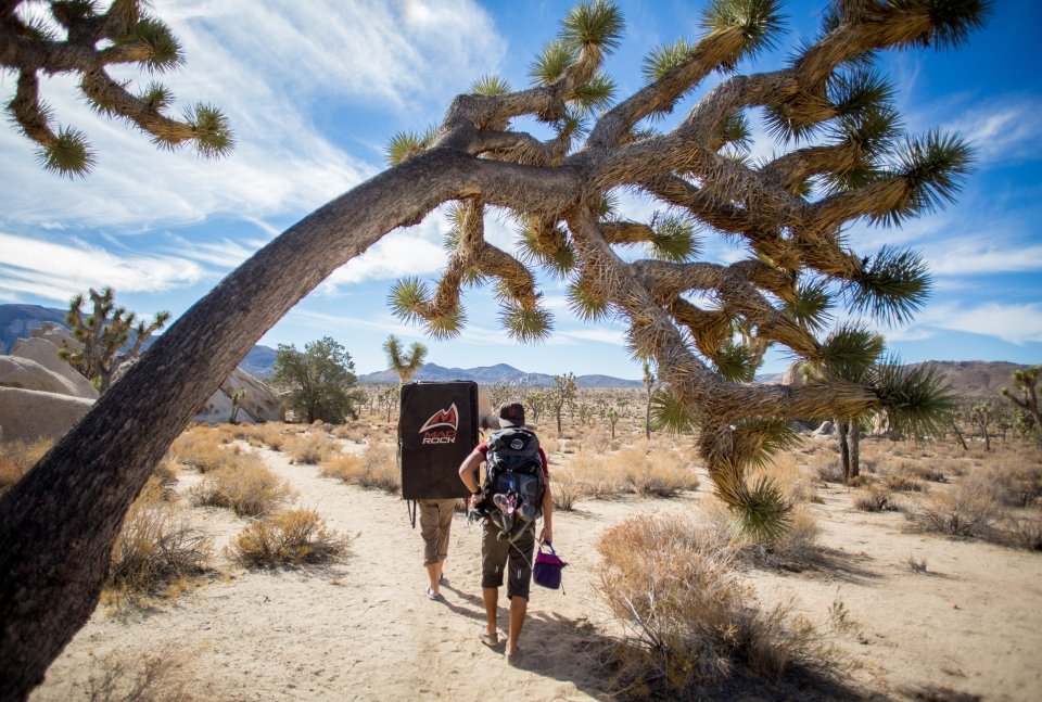 Two people hiking through desert-like terrain below a bright blue sky in Joshua Tree National Spring.