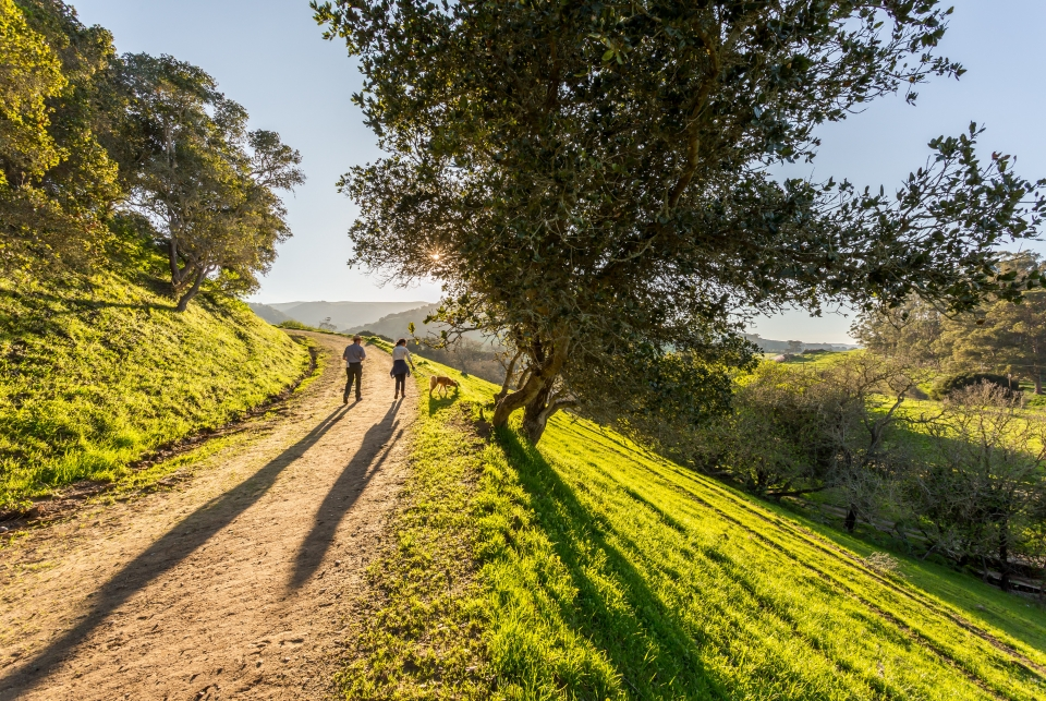 man and woman walking on a trail toward the setting sun