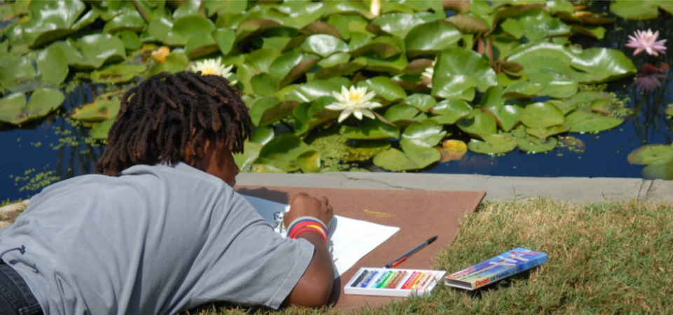 A boy lies on the ground to sketch water lilies