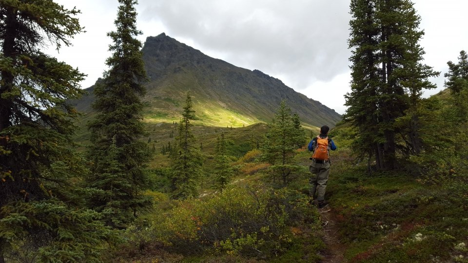 A lone hiker with an orange backpack on the trail with Crag Mountain in the background at Lake Clark National Park & Preserve