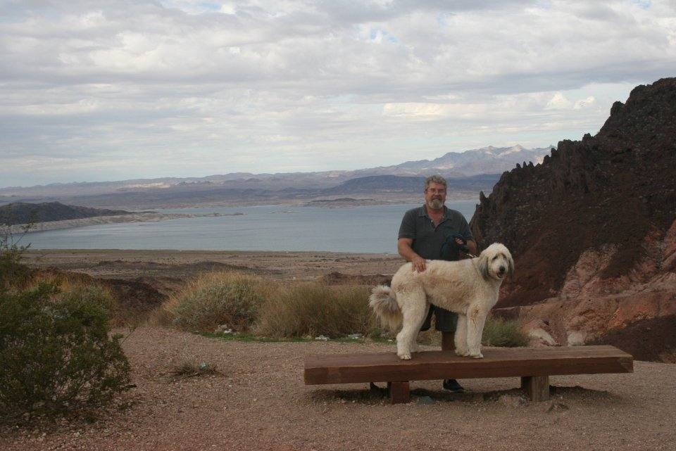 A man standing behind his big white dog on a bench with Lake Mead in the background