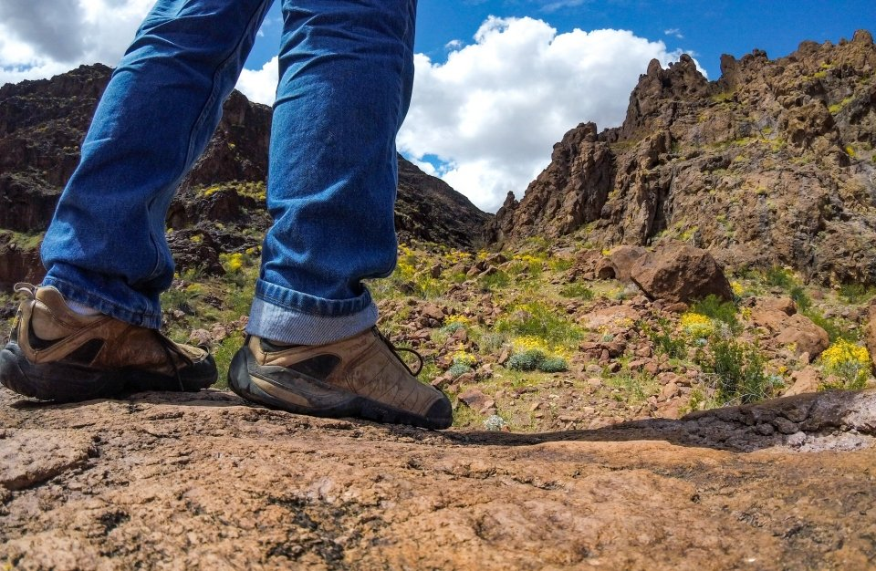 Ground level view of hikers shoes, yellow wildflowers rocky geologic formations and cloudy sky in distance