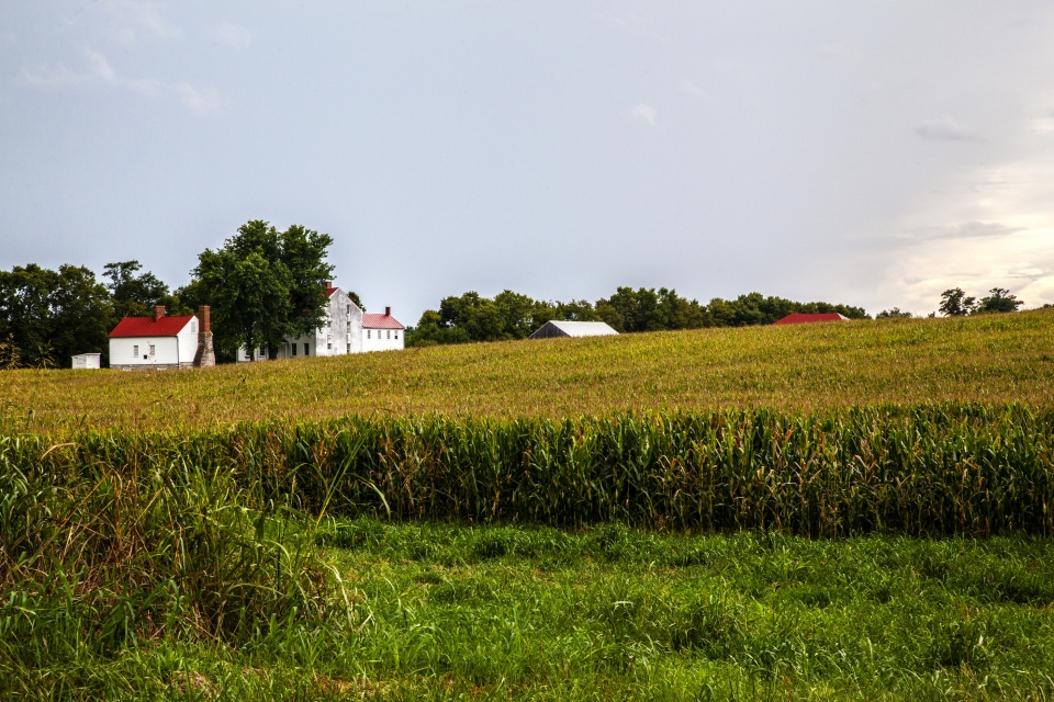 A couple of farm houses sit on the far end of an open field.