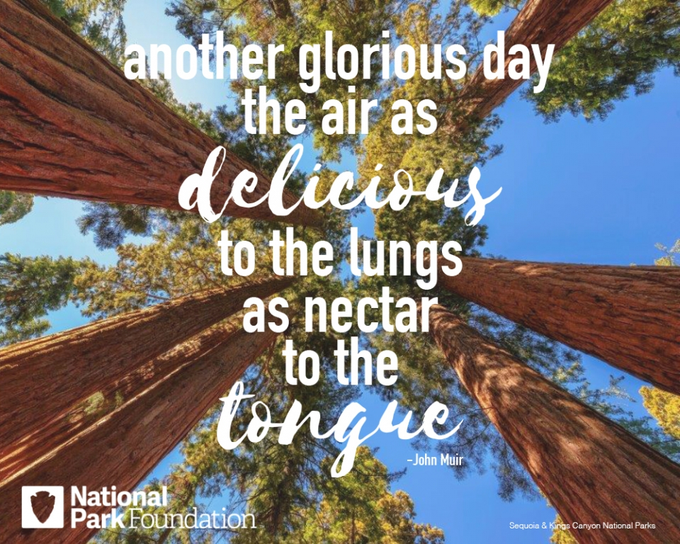 """John Muir quote """"Another glorious day the air as delicious to the lungs as nectar to the tongue"""" over a picture of Sequoia and Kings Canyon National Park"""