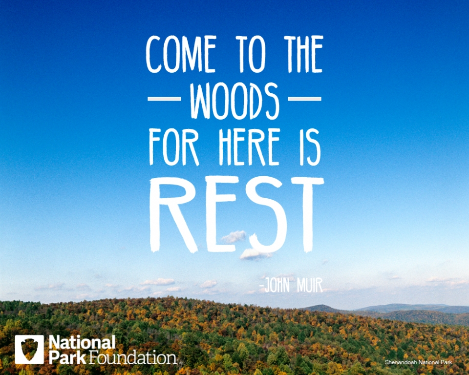 "John Muir quote ""Come to the woods for here is rest"" over an image of Shenandoah National Park"