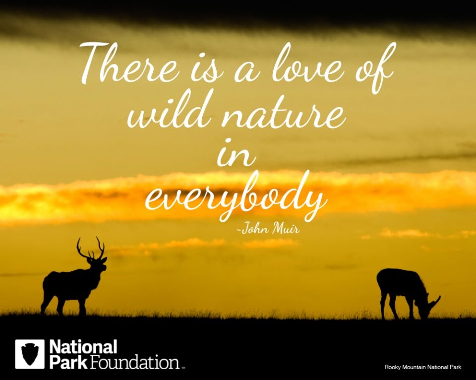 "John Muir quote ""There is a love of wild nature is everybody"" over an image of Rocky Mountain National Park"