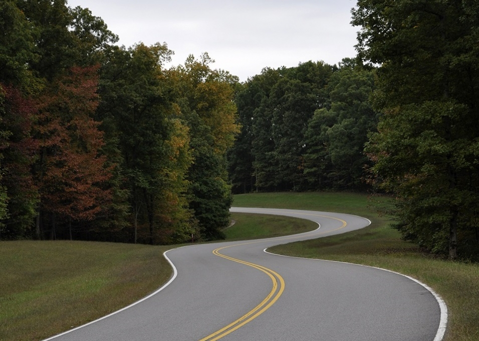 Winding road through green trees on the Natchez Trace Parkway