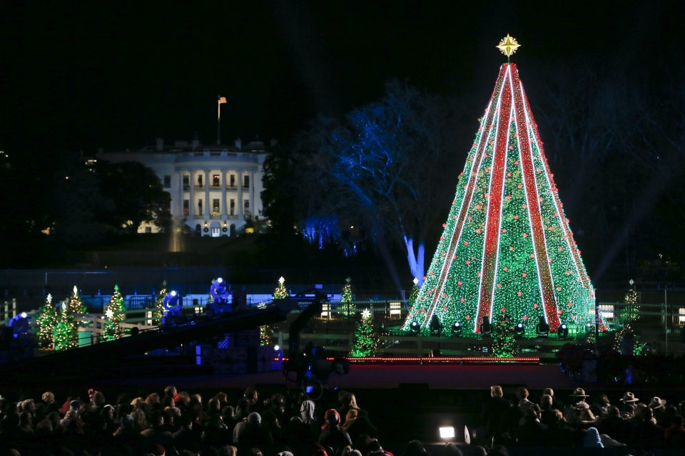 National Christmas Tree lit at night