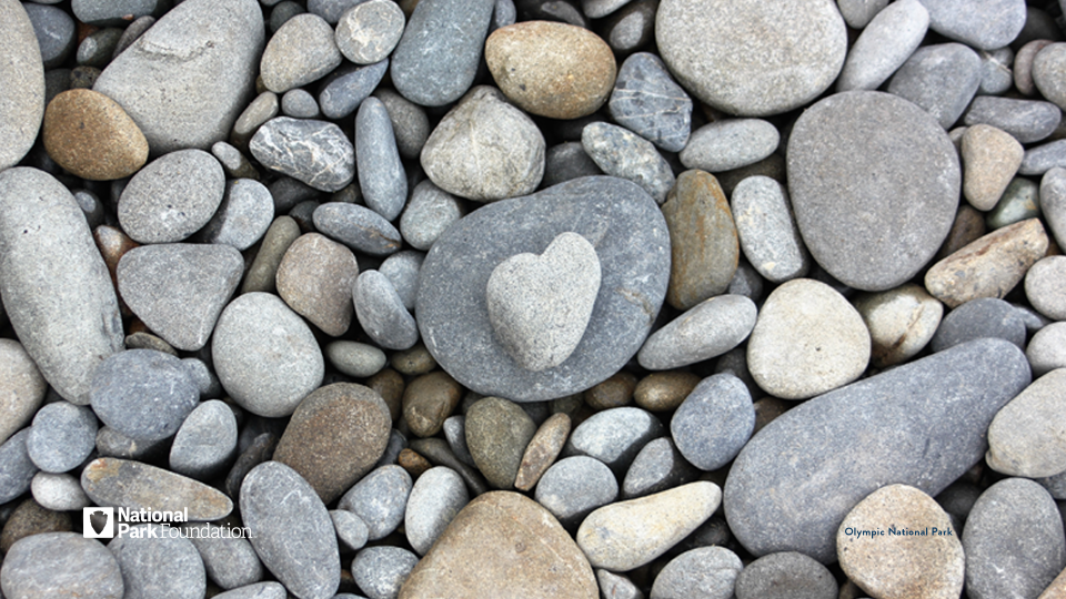 Small heart-shaped pebble amongst gray rocks and pebbles at Olympic National Park