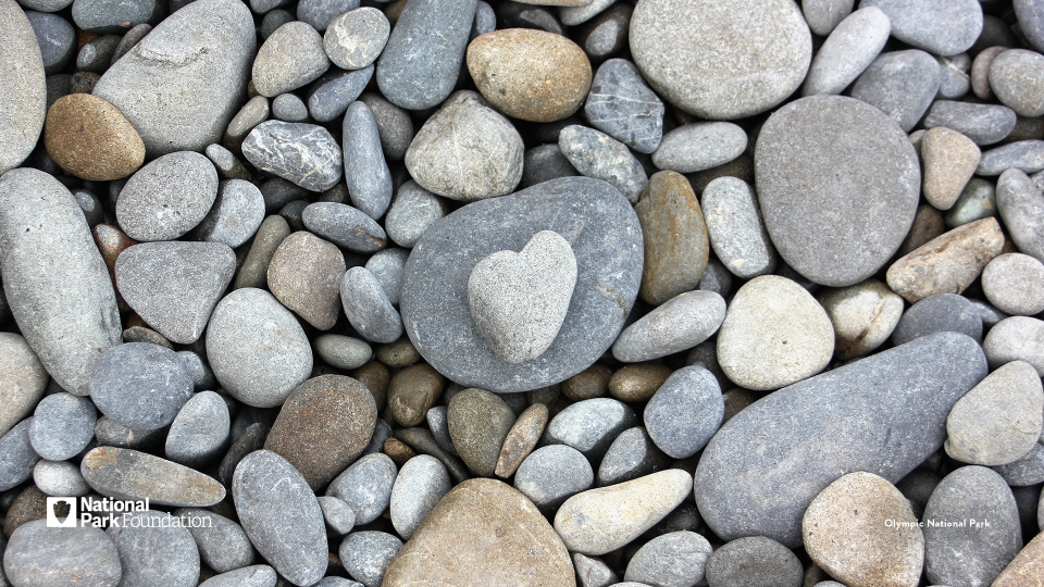 A small, heart-shaped rock sits atop many other smooth, grey and brown pebbles