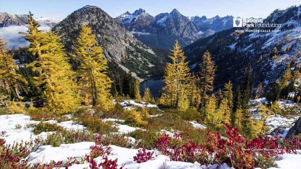 Snow and fall foliage at North Cascades National Park