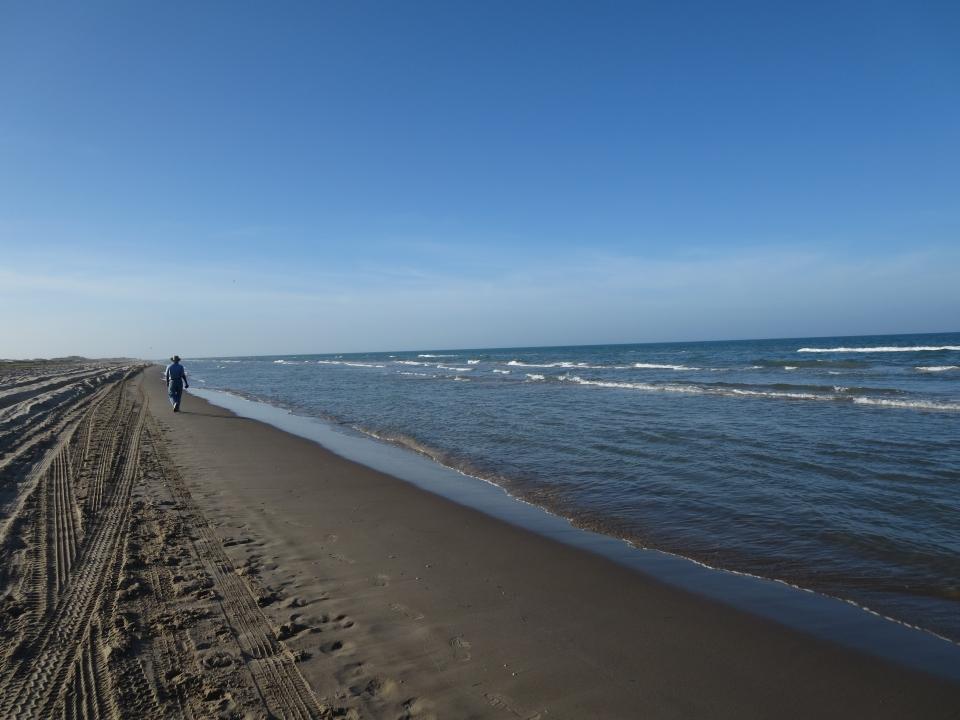 Person strolling down the quiet beach of Padre Island National Seashore.