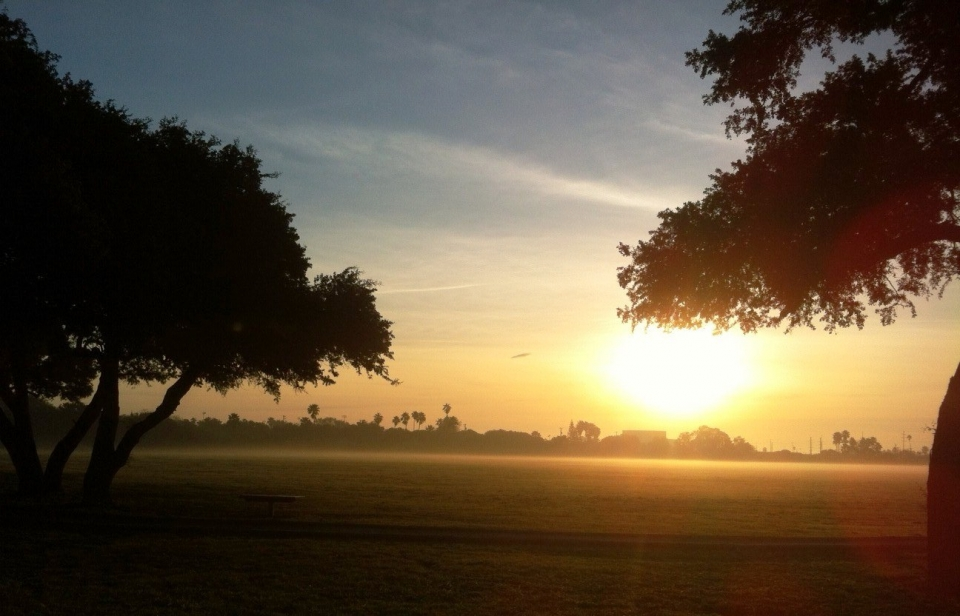 Sunrise over a field at Palo Alto Battlefield National Historical Park