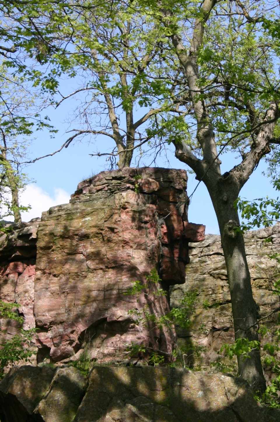 A rock that is in the shape of a human face profile. This rock in legends is believed to portray a Dakota or Sioux brave watching Winnewissa Falls.