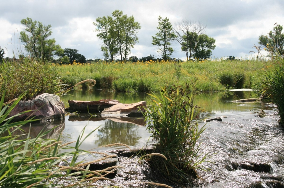 The shores of Lake Hiawatha with green plants and trees at Pipestone National Monument