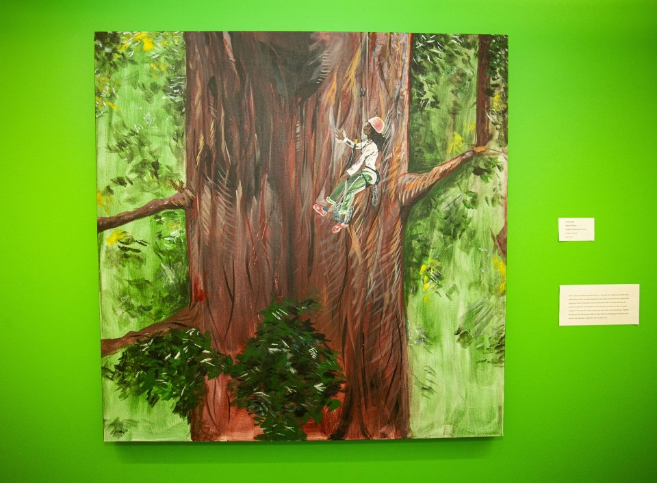 Painting against a bright green wall, depicting a woman, wearing a helmet, repelling and examining the trunk of a large sequoia tree