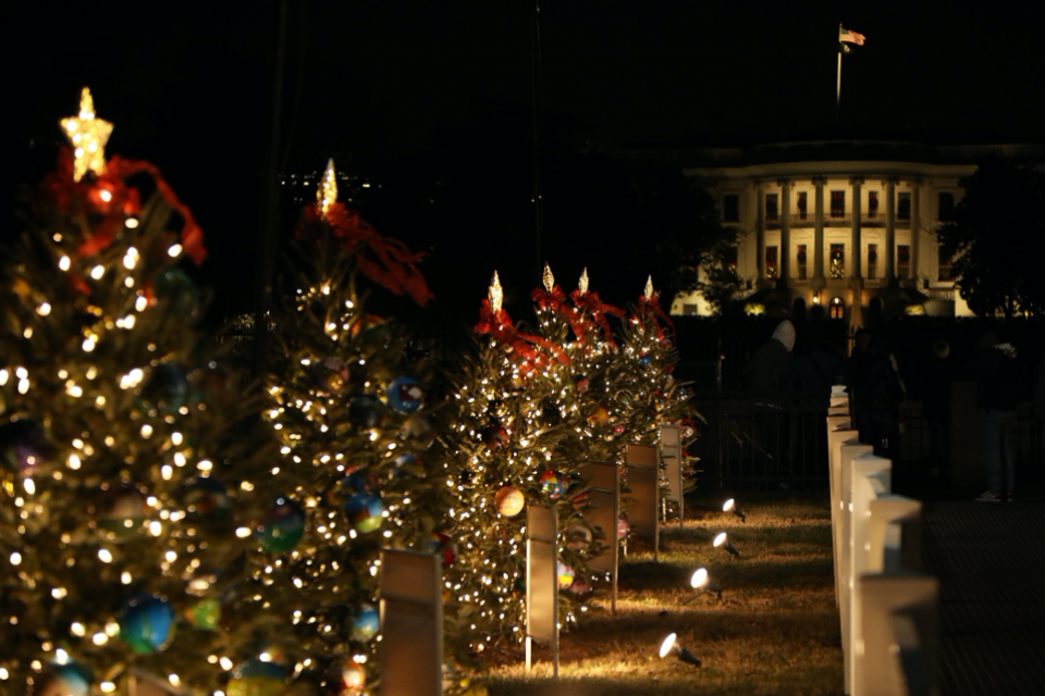 Individual state and territory trees illuminated during the 2019 National Christmas Tree celebration in President's Park
