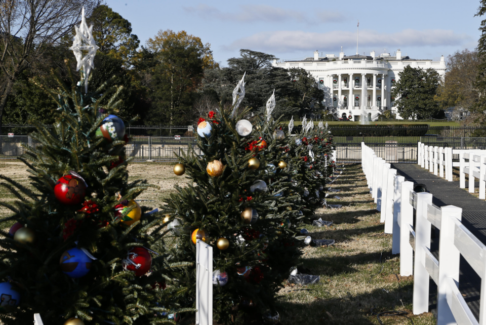 Fifty-six trees surround the National Christmas Tree in President's Park each year. The trees are decorated with ornaments created by students in each state, territory and the District of Columbia.