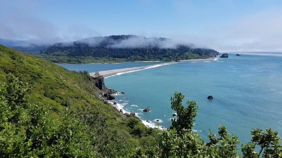 A view of the bay at Redwood National and State Park