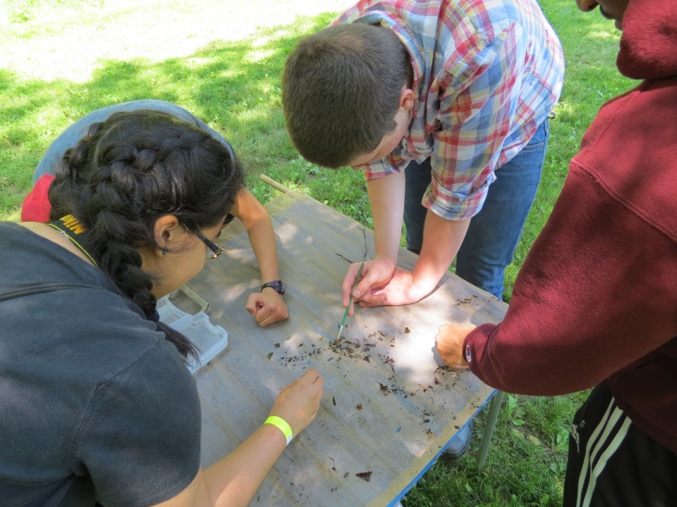 Three high school students surrounding a table and conducting an inventory of macro-invertebrates and assessing water quality at Rock Creek Park