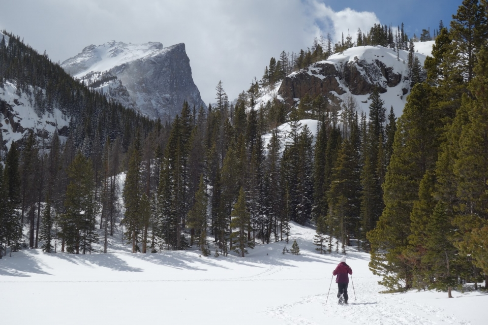 man with skis and poles on snow