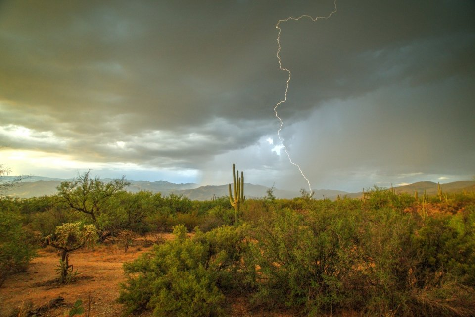 Lighting striking the ground during a distant storm at Saguaro National Park