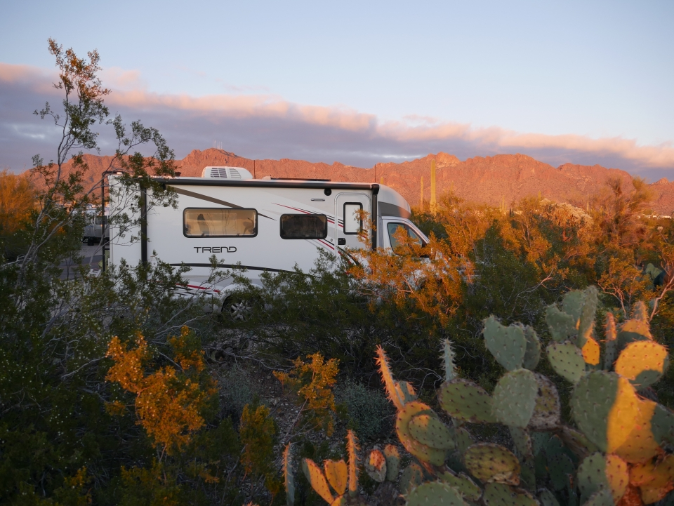 An RV parked in a park during a orange-purple sunset, surrounded by green cacti