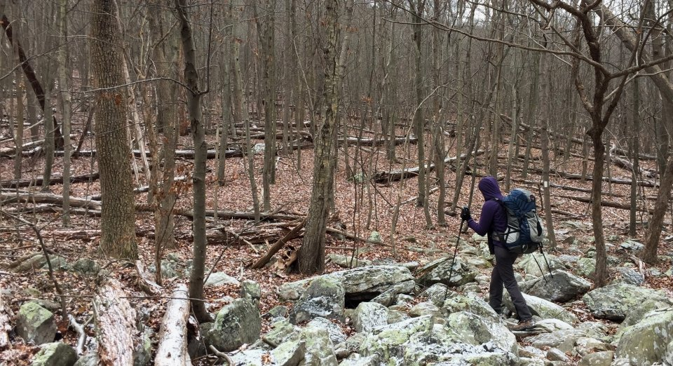 Woman wearing big backpacking backpack hiking on snow-dusted rocks in the wooded forest of Shenandoah National Park
